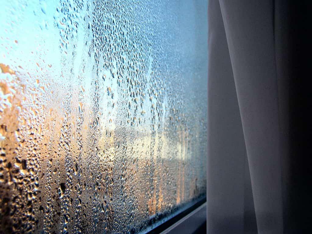 конденсат на окнах